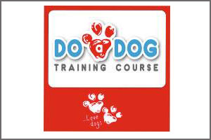 achill dog training