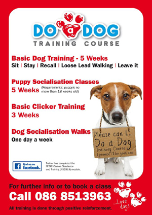 Fetac Dog Training Courses